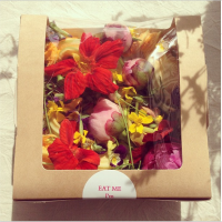 Edible Flowers from ItDoesTheJob.com